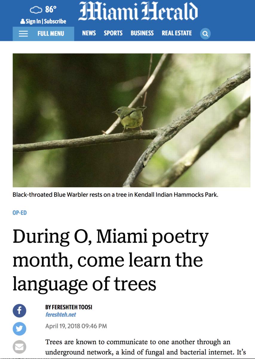 screen capture of Fereshteh's Miami Herald Op-Ed essay