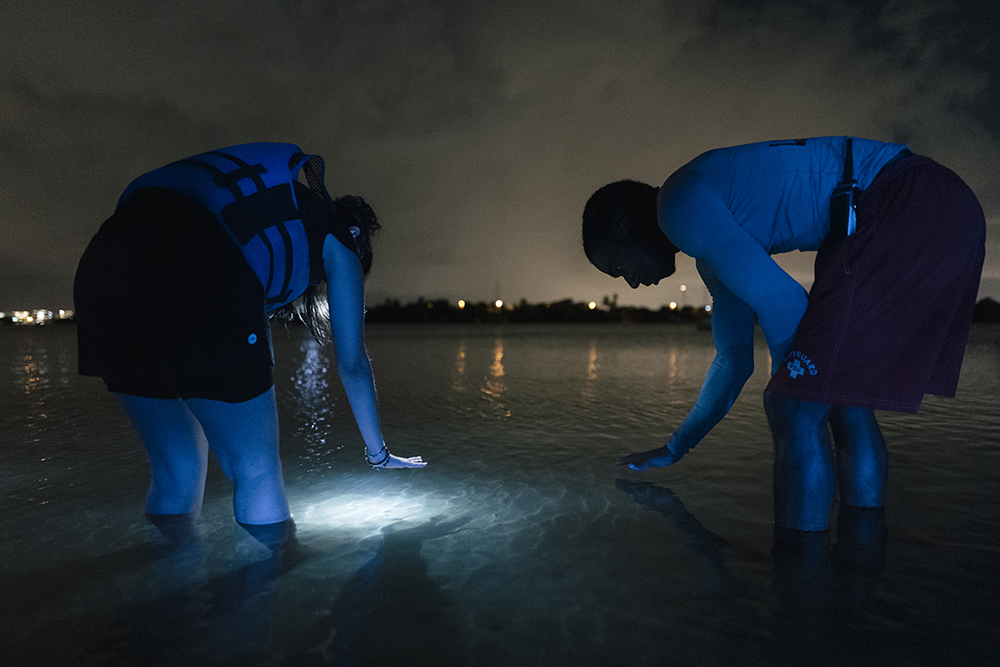Two people stand in Biscayne Bay with their arms extended, hovering their hand over the water. They are participants in a night-time kayak outing guided by artist Fereshteh Toosi.